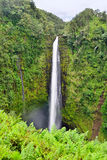 Akaka在夏威夷下跌瀑布 库存图片