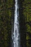 Akaka秋天,夏威夷 免版税库存照片