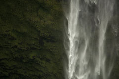 Akaka秋天,夏威夷 库存图片