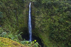 Akaka秋天,大岛,夏威夷 免版税库存照片