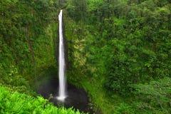 Akaka秋天,大海岛,夏威夷 免版税图库摄影