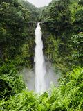 Akaka cade grande isola Hawai della cascata Immagine Stock