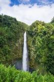 Akaka cade isola Hawai del parco di stato grande Immagine Stock Libera da Diritti