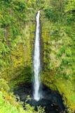 Akaka cae en la isla grande de Hawaii en delanteras tropicales de una lluvia Imagenes de archivo