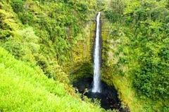 Akaka cae en la isla grande de Hawaii en delanteras tropicales de una lluvia Fotografía de archivo