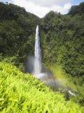 Akaka cai Havaí imagens de stock royalty free