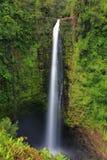 Akaka cai parque estadual em Havaí imagem de stock