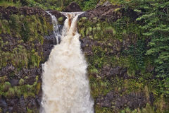 Akaka Fälle, große Insel, Hawaii Lizenzfreies Stockbild