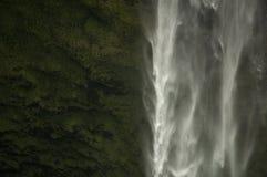 Akaka-Fälle, Hawaii Stockbilder