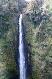 ` Akaka-Fälle, Hawaii Lizenzfreie Stockfotos