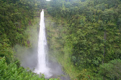 Akaka fällt auf Hawaiis große Insel Lizenzfreie Stockfotografie