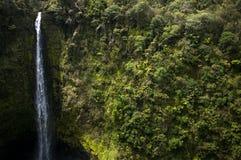 Akaka fällt Nationalpark Stockbild