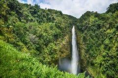 Akaka faller den stora ön Hawaii för delstatsparken Arkivbild