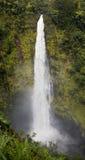 Akaka Falls Stock Image