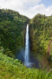 Akaka Falls Stock Photo
