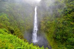 Akaka Falls Royalty Free Stock Photos