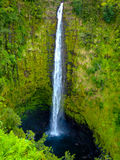 Akaka Falls, Big Island, Hawaii Royalty Free Stock Images