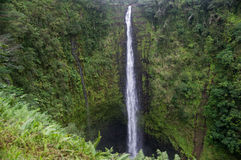 Akaka falls close to Hilo, Big Island, Hawaii Stock Photo