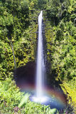 Akaka Falls Hawaii. A towering Akaka Falls in Hilo, Hawaii cascades 400 feet to a natural pool, often seen with a rainbow when the mist is heavy and the sun is Royalty Free Stock Images