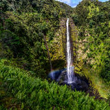 Akaka Falls in HI Royalty Free Stock Images