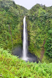 Akaka Falls waterfall in Hawaii Stock Photos