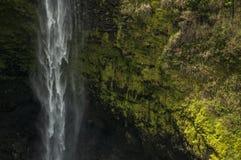 Akaka nedgångar, Hawaii Arkivbild