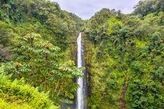 Akaka tombe cascade en Hawaï Image libre de droits