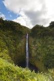 Akaka tombe stationnement d'état, cascade à écriture ligne par ligne et forêt tropicale Image libre de droits