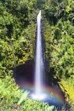 akakaen faller hawaii Royaltyfria Bilder