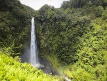 akakaen faller hawaii royaltyfri foto