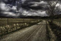 Akalla łąki fotografia stock