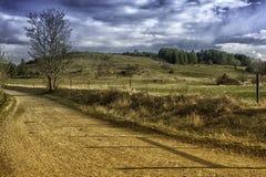 Akalla zieleni pola Zdjęcie Royalty Free