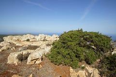 Akamas Peninsula, Cyprus, Europe Stock Photos