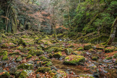 Akame 48 cascades Photographie stock