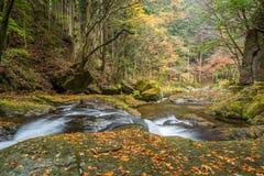 Akame 48 vattenfall Royaltyfri Foto