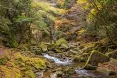 Akame 48 vattenfall Arkivfoton