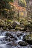 Akame 48 vattenfall Royaltyfri Bild