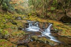 Akame 48 waterfalls Royalty Free Stock Photos