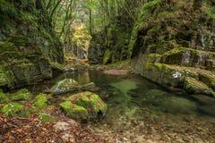 Akame 48 waterfalls Stock Photography