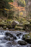 Akame 48 waterfalls Royalty Free Stock Image