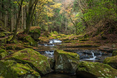 Akame 48 waterfalls Royalty Free Stock Photo