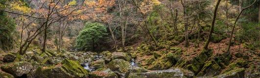 Akame 48 waterfalls Royalty Free Stock Photography