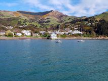 Akaroa Bay, New Zealand Royalty Free Stock Images