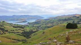 Akaroa Harbor and lake Stock Images