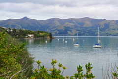 Akaroa Harbor in New Zealand Royalty Free Stock Images