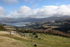 Akaroa - la Nuova Zelanda Immagini Stock