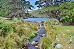 Akaroa-Landschaft Lizenzfreie Stockfotografie