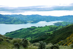 Akaroa,New Zealand. Akaroa  Peninsula South Island New Zealand Royalty Free Stock Photography
