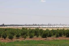 Akcakale Syrian  refugee camp Royalty Free Stock Photography