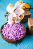 akcesoria kąpać się ciała kawioru klejnotu mleka mydła zdroju kamieni ręczniki Obraz Stock